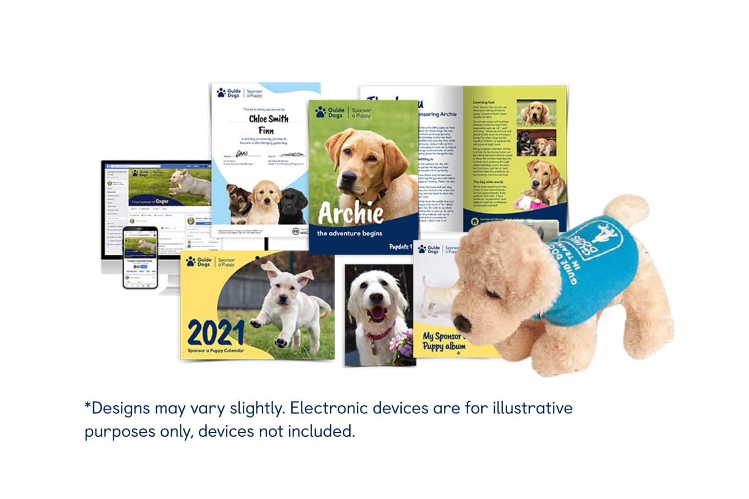Sponsor a Puppy Derek
