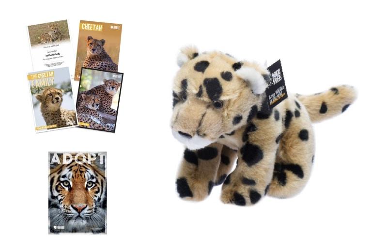 Adopt a Cheetah