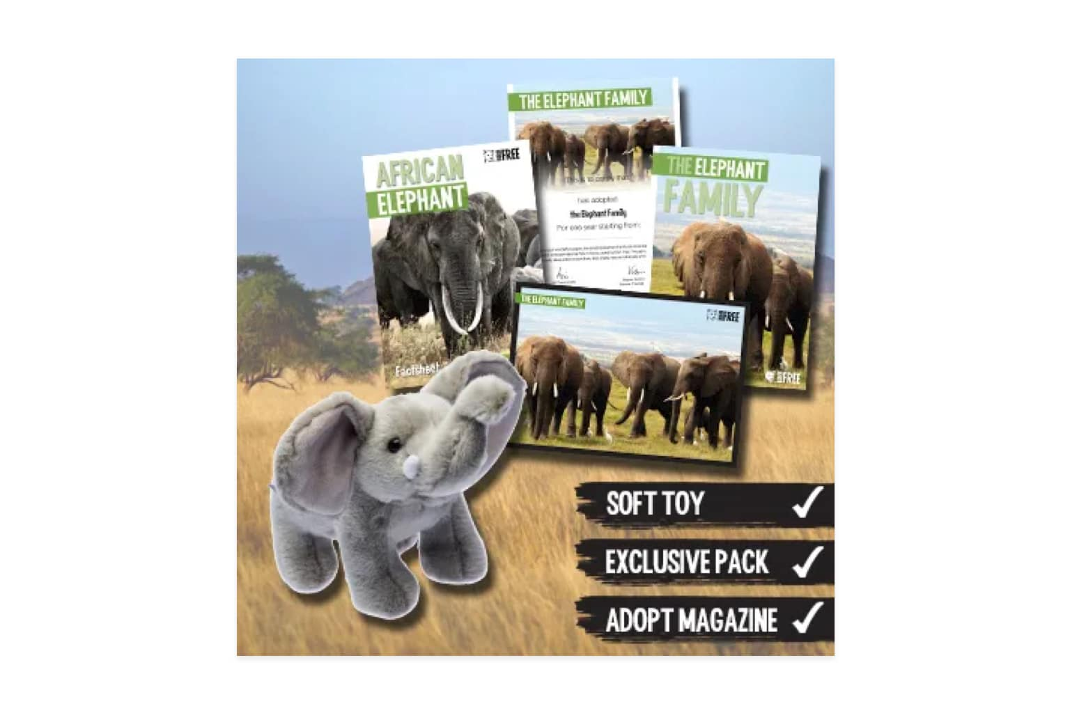 Charity Gifts from Born Free
