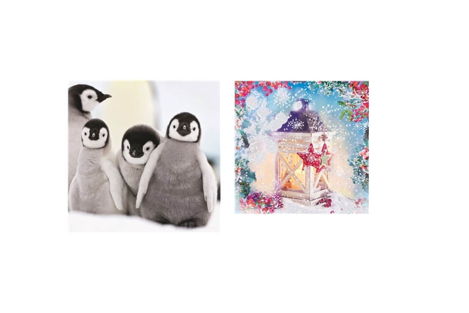 Christmas Cards & Wrapping Paper