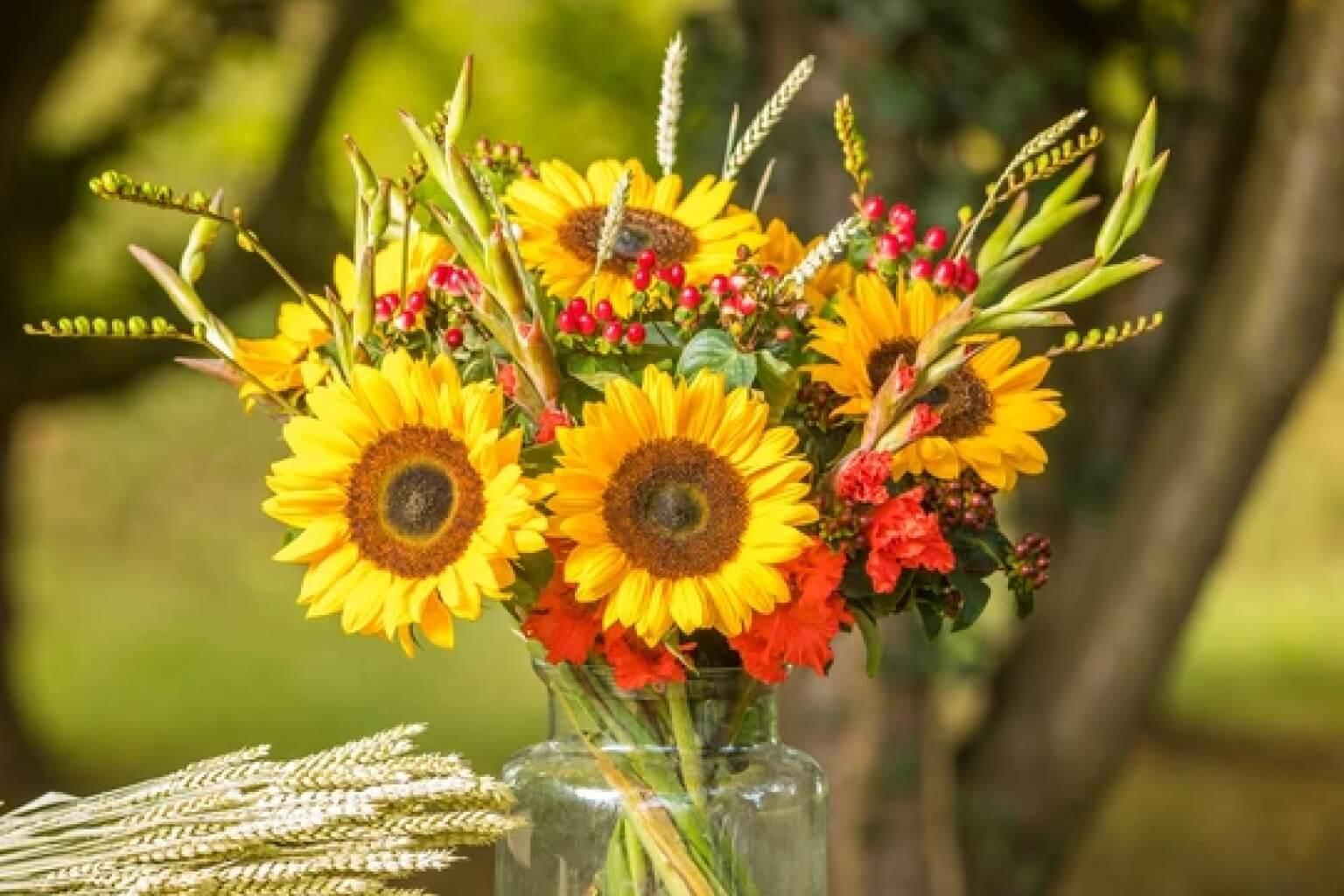 Wide Range of Fresh Flowers